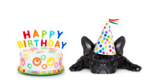 Free Happy Birthday Pictures With Dogs